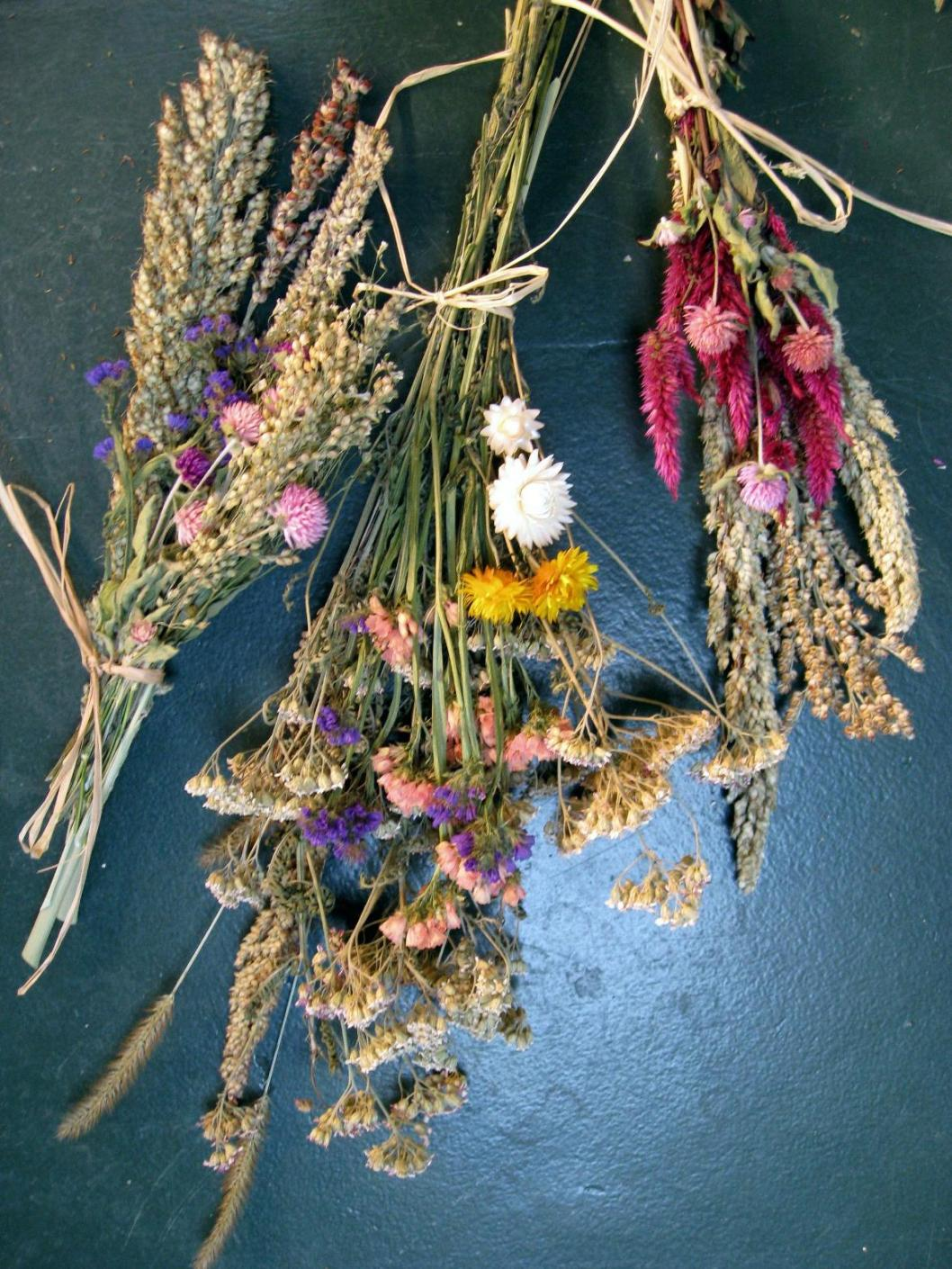 Comment Faire Secher Une Rose Fraiche séchage de fleurs, comment faire sécher ses fleurs