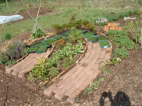 6 conseils pour r ussir son jardin potager bricoleur malin - Arrosage jardin potager ...